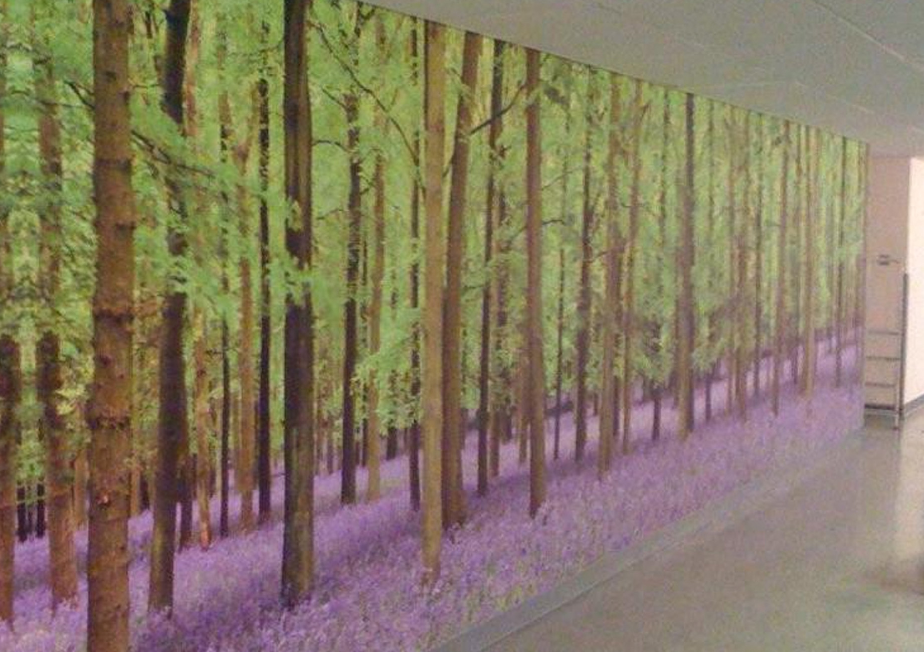Corridor Wall Graphic Printing